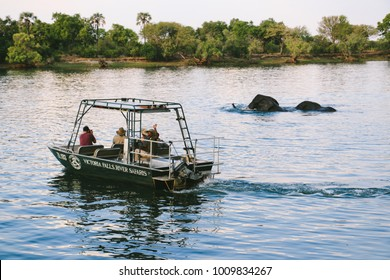 LIVINGSTONE, ZAMBIA - CIRCA NOVEMBER 2017: Tourists on a sunset boat cruise on the Zambezi river in Livingstone watching a group of elephants bathing in the river