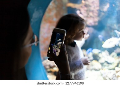 Livorno, Italy - December 1, 2018:  Little girl visits the wonderful Livorno aquarium with tropical fish and tanks with large fish.