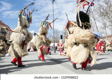Sheep and Wool Festival Images, Stock Photos & Vectors