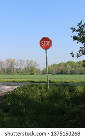 Ljutomer / Slovenia - 04 18 2019: On a beautiful sunny day there is a stop sign.