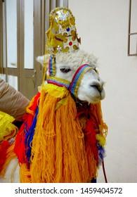 Festive Llama Images, Stock Photos & Vectors | Shutterstock