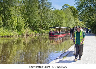 Llangollen,Denbighshire, Wales. 14th May, 2019. The horse-drawn canal passenger boat James Brindley being pulled by a horse along the Llagollen canal on a bright sunny day with a background of trees.