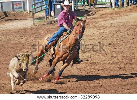 Team roping texas