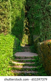 Lloret de Mar, Spain - April 11, 2017: Staircase covered with ivy in the Santa Clotilde Gardens in Lloret de Mar.