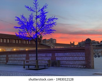 lluminated tree for an event, at sunset in Madrid Rio Park, Madrid, Spain Madrid Rio Park in Madrid, Spain