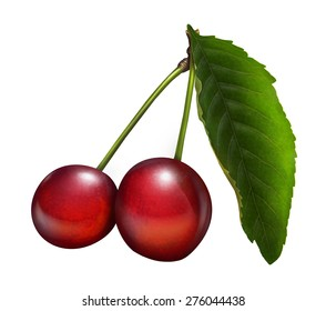 llustration of fresh cherries with leaves isolated on white background