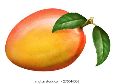 llustration of fresh mango with leaves isolated on white background