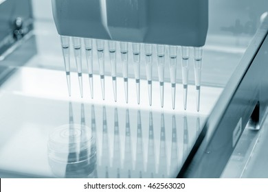 load DNA sample in electrophoresis device