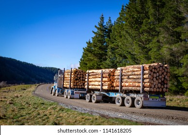 A loaded logging truck leaves the forestry site ready to transport logs to the sawmill or for export