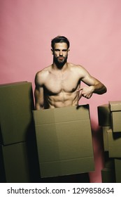 Loader with serious face covers nudity, points to box. Guy with sexy torso holds box in front. Man with beard stands on pink background, copy space. Seduction and moving concept.