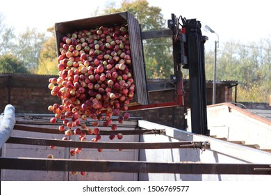 Loading apples on a truck with a forklift. Apples are transported to industrial production facility for juice. Fruits and food distribution.