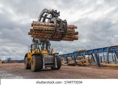 Loading equipment for logging. Log loader for timber, logs. The log loader moves a stack of pine logs. Lumber industry. Woodworking factory.
