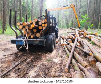 loading logs in the forest
