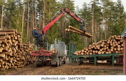Loading, unloading wood. Logging and transportation. Transport logging and forest industry.