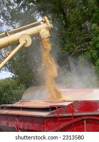 LOADING WHEAT SEEDS AT A FARM IN ARGENTINA