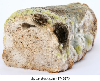 Loaf of mouldy brown bread, macro close up, isolated on white,