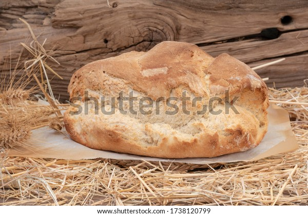 loaf-rustic-homemade-bread-on-600w-17381
