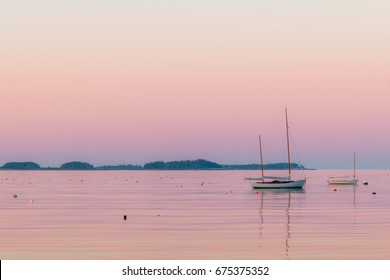 Lobster boasts in the quiet and still harbor at dawn in Martin's Point, Maine