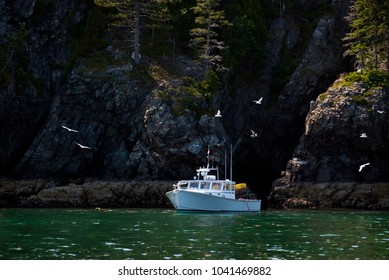 Lobster boat preparing to haul and lay out traps by high cliffs rising from rocky island in Maine as seagulls fly overhead.
