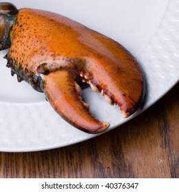 Lobster Claw on Plate