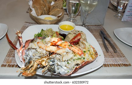 Lobster dish at Bridgetown - Barbados caribbean tropical island