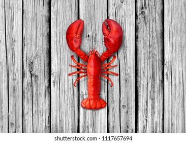 Lobster on old white wood background as weathered copy space representing seafood and marine ocean or sea lifestyle.