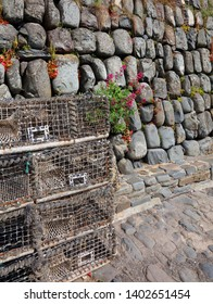 Lobster pots and flowers on Clovelly Harbour wall