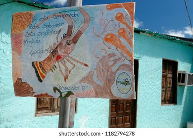 lobster regulation in the village on the Gran Roque Island at the Los Roques Islands in the caribbean sea of Venezuela.   Venezuela, Los Roques, November, 2005