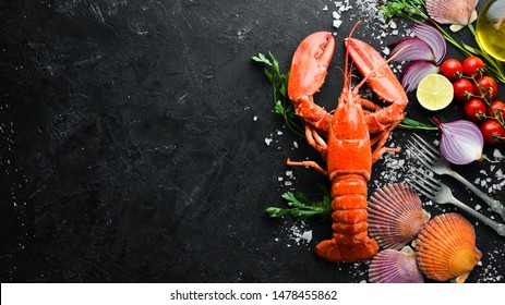 Lobster with spices on a dark background. Top view. Free copy space.