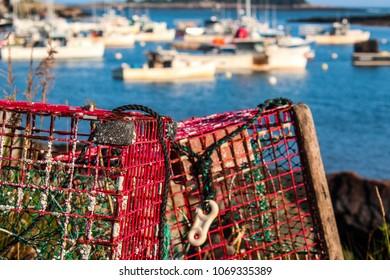 Lobster trap overlooking harbor