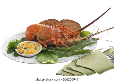 lobsters and crayfish sauce on colored background