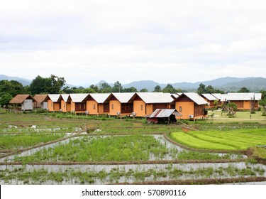 Local cottages and bungalows in rice paddies of northern Thailand.