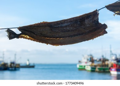 A local delicacy, bokkoms (dried fish) hanging and ready to sell in Kalk Bay Harbour, Cape Town, South Africa