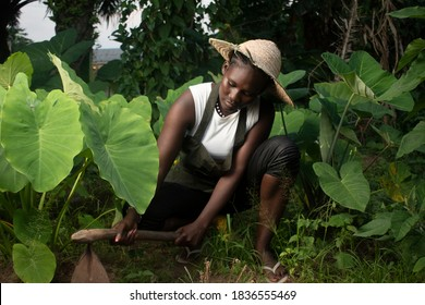 a local farmer in west africa