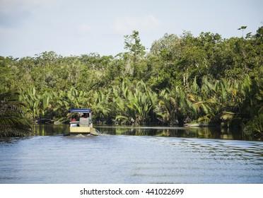 Local 'klotok' boat on Sekonyer River into Tanjung Puting Jungle, Borneo, Indonesia