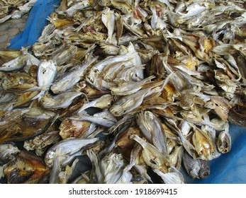 Local production of salted fish and shrimp paste industry