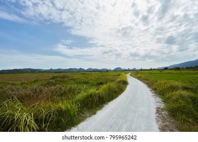 Local road through green grass field