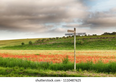 Local signpost in a field of red poppies. Travel concept in rural Norfolk England landscape