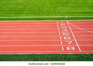 Local stadium and running track