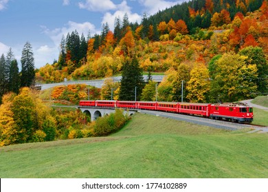 A local train of Rhaetian Railway (RhB) travels thru a viaduct onto green grassy meadows with beautiful fall colors on the hillside, in Klosters village near Davos in Grisons (Graubunden), Switzerland