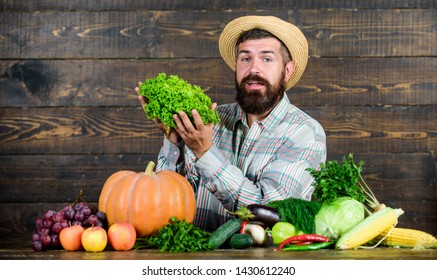 Locally grown crops concept. Buy vegetables local farm. Typical farmer guy. Farm market harvest festival. Man mature bearded farmer hold vegetables wooden background. Sell vegetables. Local market.