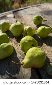 locally grown green California pears on rustic outdoor tabletop