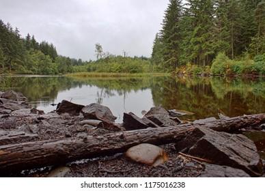 Loch Ard, Queen Elizabeth Forest, Loch Lomond and The Trossachs National Park, Scotland, UK.