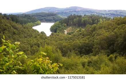 Loch Drunkie, Queen Elizabeth Forest, Loch Lomond and The Trossachs National Park, Scotland, UK.