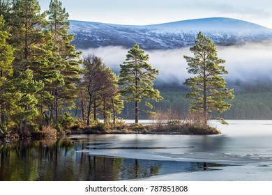 Loch an Eilein. A small Scottish Loch in the Cairngorm National Park.