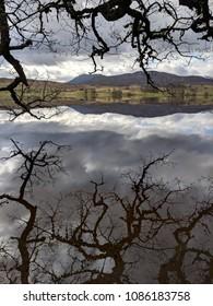 Loch Rannoch, Scotland, on a Quiet morning