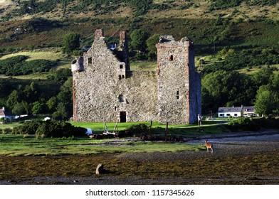 Lochranza,Isle of Arran,Scotland,UK. 8/10/2018. Lochranza Castle at sunset with red deer grazing on shoreline.