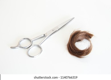 Lock of hair and a haircut scissor in a white background
