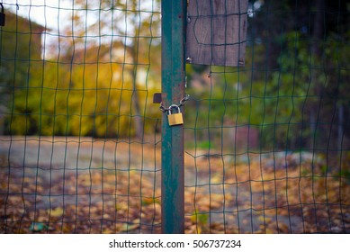 The lock on the gate