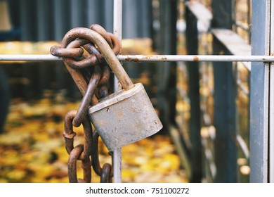 Lock on metal fence close-up on autumn blurry background.